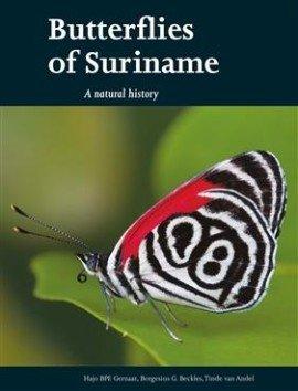 Butterflies of Suriname - Hajo B.P.E. Gernaat - 9789460221712